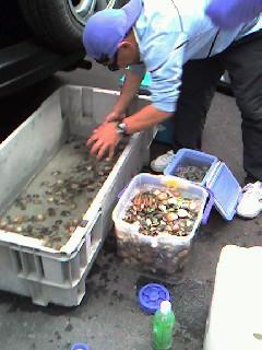 6月4日羽田沖で潮干狩り